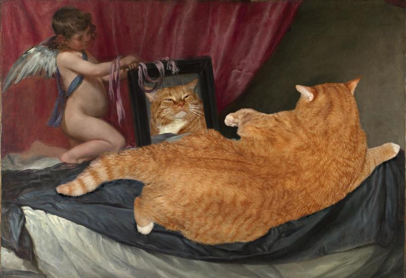 Обнаженная рыжая тетка играет с котом  184872